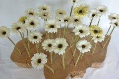 018-white-flowers-2